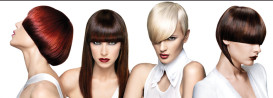 31018-preview-parrucchieri